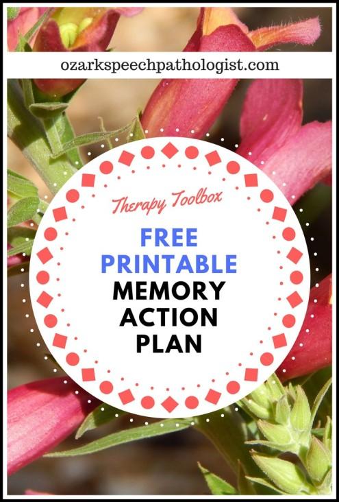 memoryactionplan